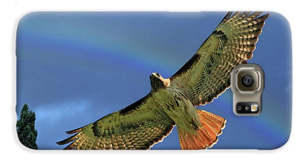 Wings 2 Galaxy S6 Case by Donna Kennedy
