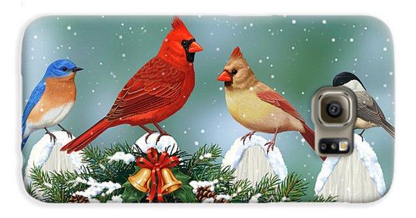 Winter Birds And Christmas Garland Galaxy S6 Case