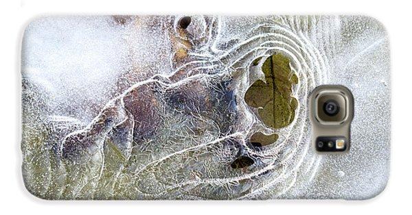 Winter Ice Galaxy S6 Case by Christina Rollo