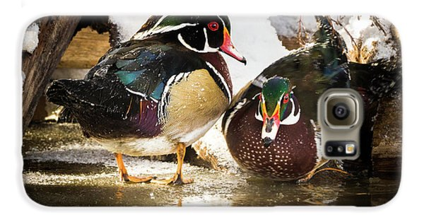 Winter Visitors - Wood Ducks Galaxy S6 Case