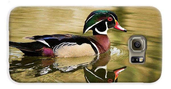 Wood Duck Cruising Galaxy S6 Case