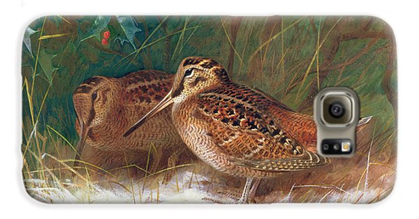 Woodcock In The Undergrowth Galaxy S6 Case by Archibald Thorburn