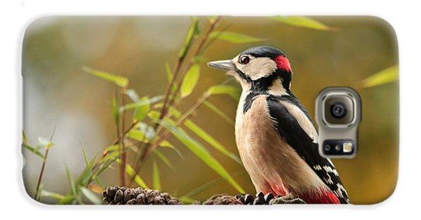 Woodpecker 3 Galaxy S6 Case by Heike Hultsch
