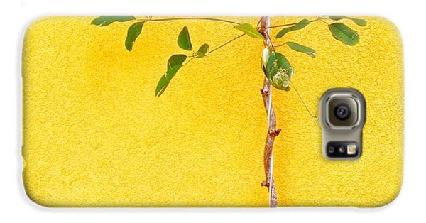 Galaxy S6 Case - Yellow #2 by Julie Gebhardt