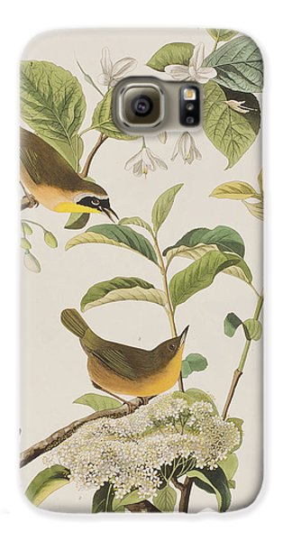 Yellow-breasted Warbler Galaxy S6 Case by John James Audubon