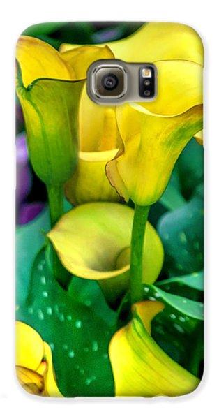 Colours Galaxy S6 Case - Yellow Calla Lilies by Az Jackson