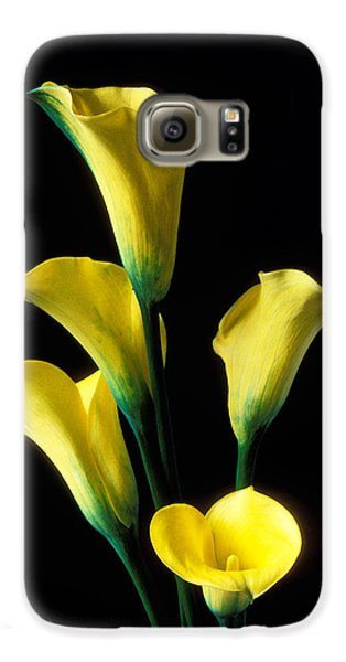Lily Galaxy S6 Case - Yellow Calla Lilies  by Garry Gay