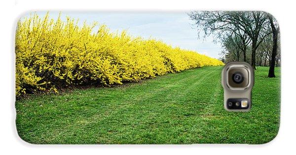 Yellow Flowers Galaxy S6 Case