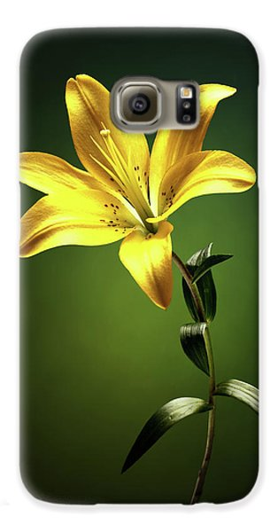 Lily Galaxy S6 Case - Yellow Lilly With Stem by Johan Swanepoel