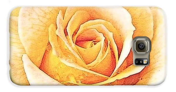 Galaxy S6 Case featuring the photograph Yellow Rose by Karen Shackles