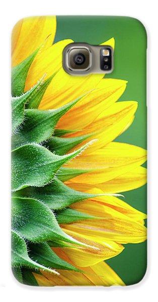 Yellow Sunflower Galaxy S6 Case