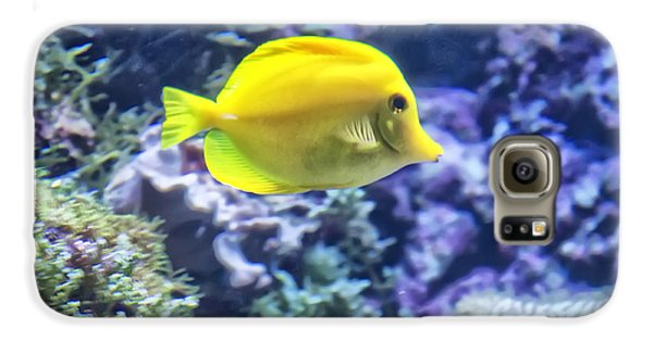 Yellow Tang Galaxy S6 Case