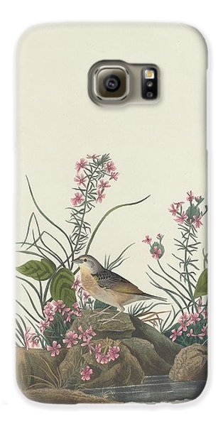 Yellow-winged Sparrow Galaxy S6 Case by Anton Oreshkin