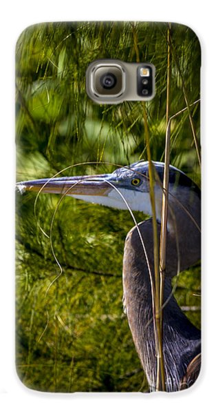 Mangrove Galaxy S6 Case - You Can't See Me by Marvin Spates