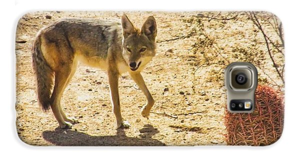 Young Coyote And Cactus Galaxy S6 Case