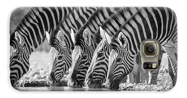 Zebras Drinking Galaxy S6 Case by Inge Johnsson