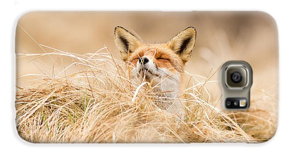 Zen Fox Series - Zen Fox 2.7 Galaxy S6 Case