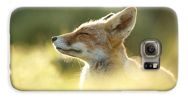 Fox Galaxy S6 Case - Zen Fox Series - Zen Fox Up Close by Roeselien Raimond