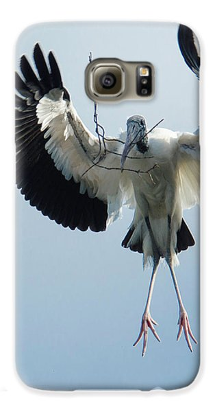 Woodstork Nesting Galaxy S6 Case