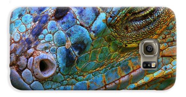 Colours Galaxy S6 Case - Amazing Iguana Specimen Displaying A by Tessarthetegu