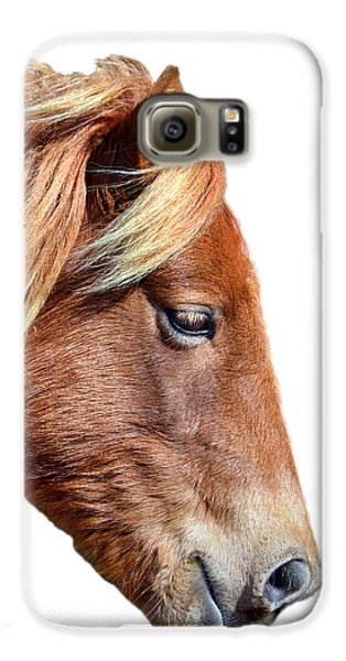 Galaxy S6 Case featuring the photograph Assateague Pony Sarah's Sweet On White by Bill Swartwout Fine Art Photography