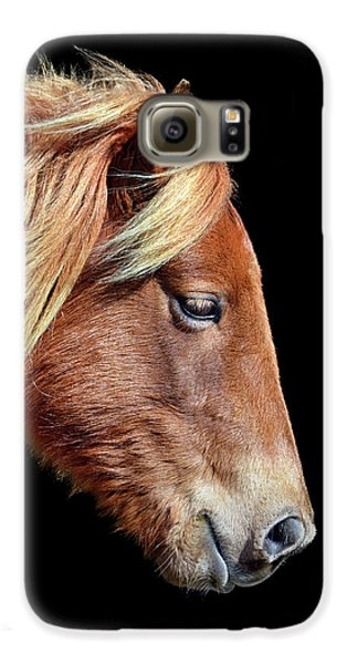 Galaxy S6 Case featuring the photograph Assateague Pony Sarah's Sweet Tea On Black Square by Bill Swartwout Fine Art Photography