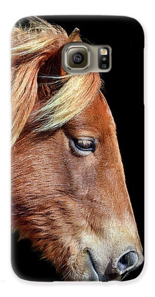 Galaxy S6 Case featuring the photograph Assateague Pony Sarah's Sweet Tea Portrait On Black by Bill Swartwout Fine Art Photography