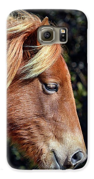 Galaxy S6 Case featuring the photograph Assateague Pony Sarah's Sweet Tea Profile by Bill Swartwout Fine Art Photography