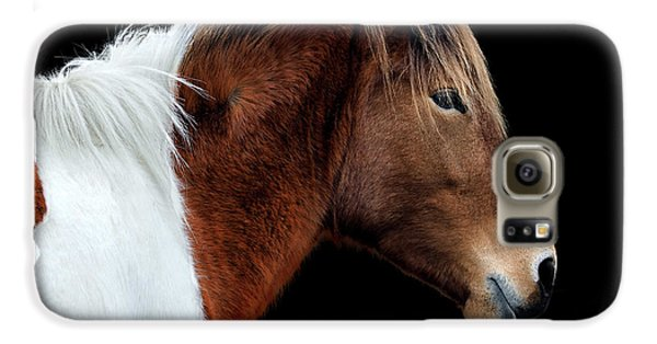 Galaxy S6 Case featuring the photograph Assateague Pony Susi Sole Portrait On Black by Bill Swartwout Fine Art Photography