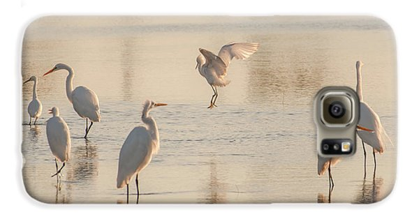 Ballet Of The Egrets Galaxy S6 Case