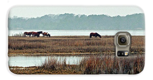 Galaxy S6 Case featuring the photograph Band Of Wild Horses At Sinepuxent Bay by Bill Swartwout Fine Art Photography