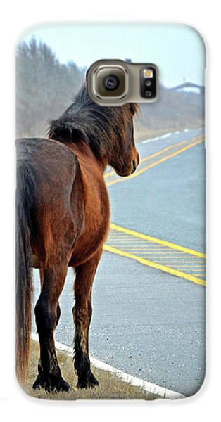 Galaxy S6 Case featuring the photograph Delegate's Pride Awaiting Tourists On Assateague Island by Bill Swartwout Fine Art Photography