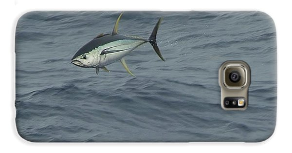 Jumping Yellowfin Tuna Galaxy S6 Case