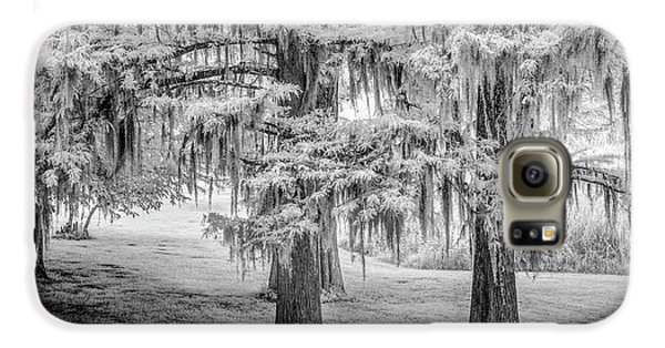 Moss Laden Trees 4132 Galaxy S6 Case