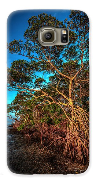Mangrove Galaxy S6 Case - Summer Winds by Marvin Spates