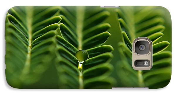 Galaxy Case featuring the photograph  A Green Drop by Michelle Meenawong