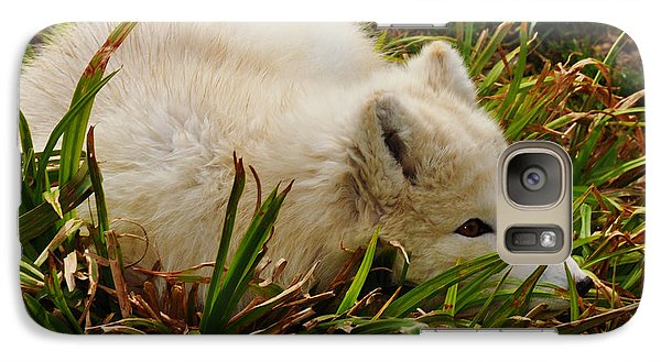 Galaxy Case featuring the photograph  A White Fox by Mindy Bench