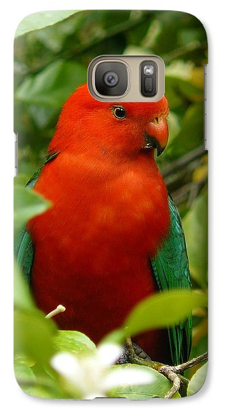 Galaxy Case featuring the photograph  Aussie King Parrot by Margaret Stockdale