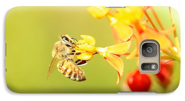 Galaxy Case featuring the photograph  Bee On Milkweed by Greg Allore