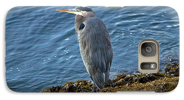 Galaxy Case featuring the photograph  Blue Heron On A Rock by Eti Reid