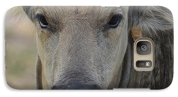 Galaxy Case featuring the photograph  Buffalo by Michelle Meenawong
