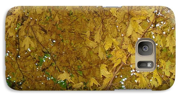 Galaxy Case featuring the photograph  Fall Amur Maple  by J L Zarek