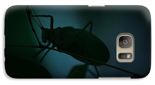 Galaxy Case featuring the photograph  It's A Bug... by Tammy Schneider