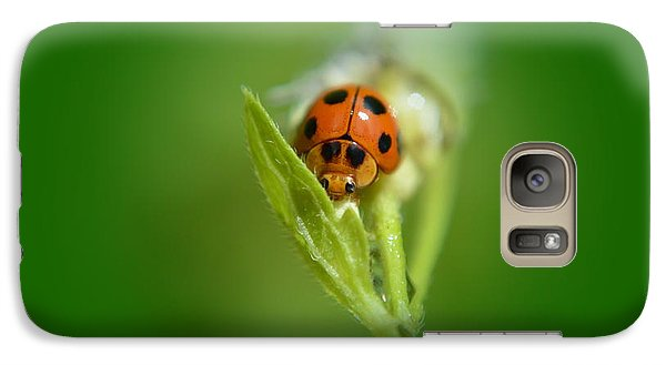 Galaxy Case featuring the photograph  Ladybug by Michelle Meenawong