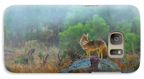 Galaxy Case featuring the photograph '' Morning Patrol '' by Kadek Susanto