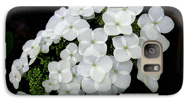 Galaxy Case featuring the photograph  Oak Leaf Hydrangea by William Tanneberger
