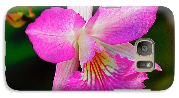 Galaxy Case featuring the photograph  Orchid Flower by Nicola Fiscarelli
