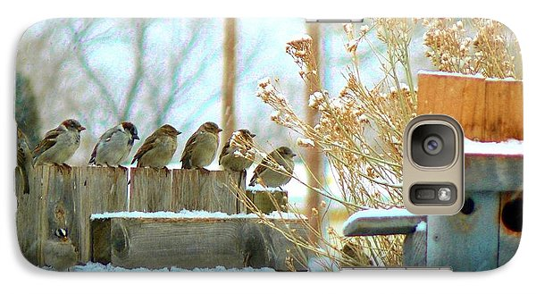 Galaxy Case featuring the photograph 7 Winter Sparrows by Deborah Moen