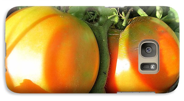 Galaxy Case featuring the photograph  Vine Ripe Tomatoes by Tina M Wenger