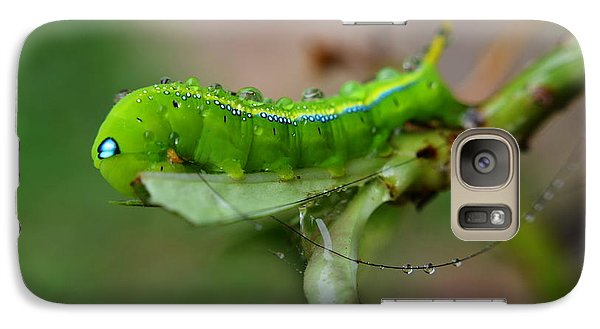 Galaxy Case featuring the photograph  Wet Caterpillar by Michelle Meenawong